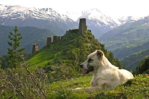 Keselo Fortress, Tusheti